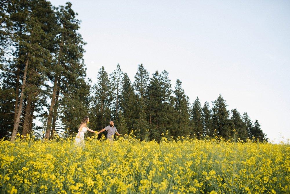 Moscow-Idaho-Canola-Engagement-Session-Photo-09.JPG