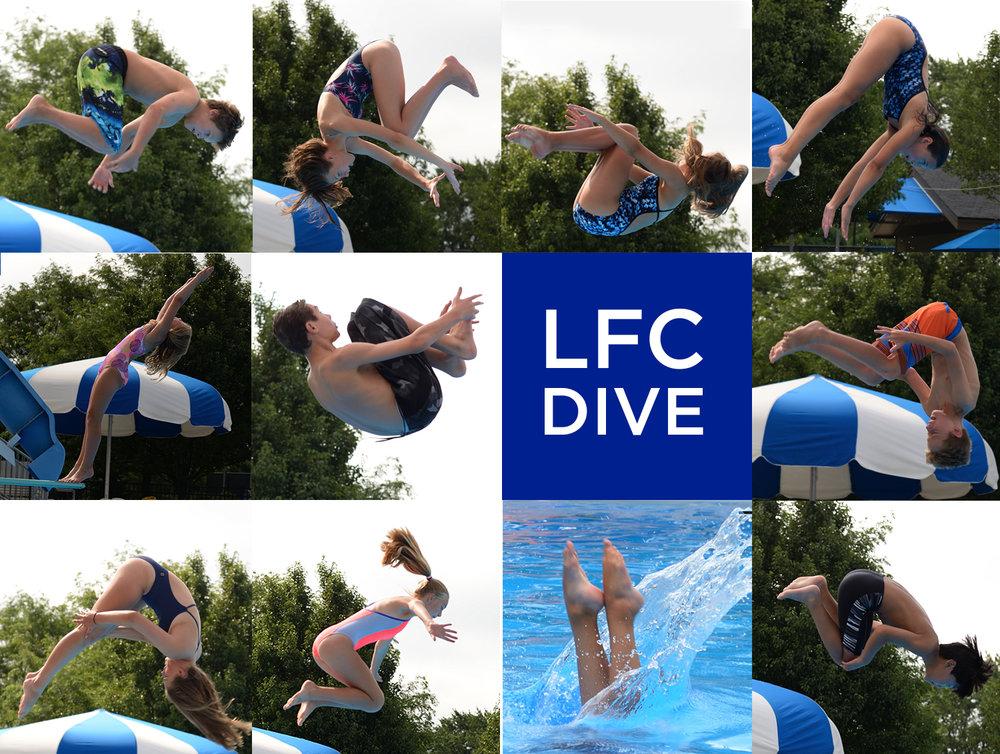Diver Collage.jpg