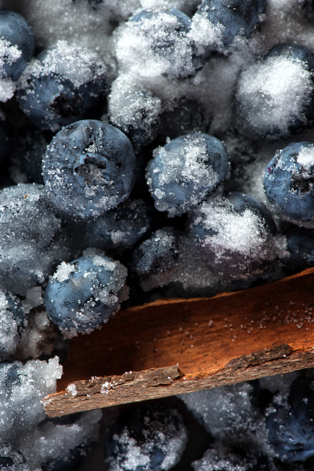 Blueberries-038-Edit.JPG