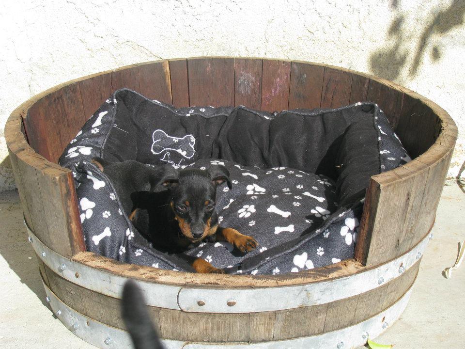 King Barrel pet bed.jpg