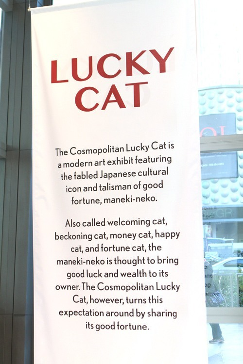 lucky_cat_cosmo2.jpg