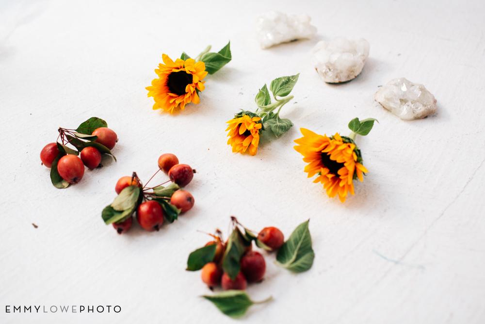 EmmyLowePhotoRocks.Sunflowers-20.jpg