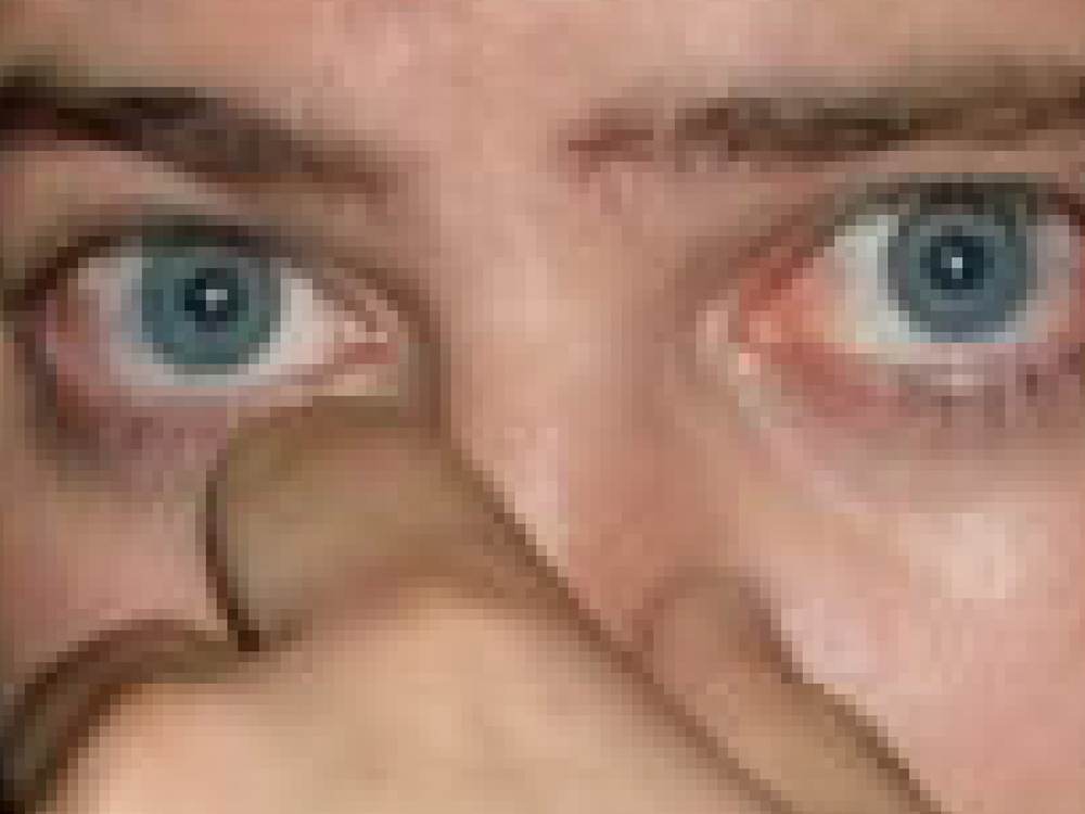 closeup.jpg