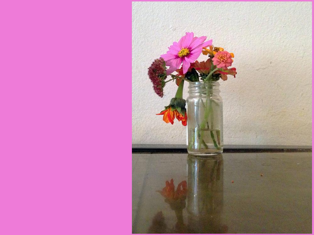 flowerspink.jpg