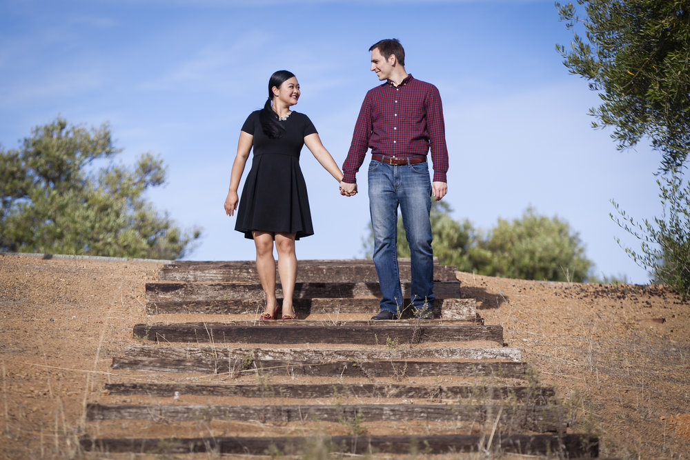 andrew-maissa-engagement-session-Mountain-Winery-4.jpg