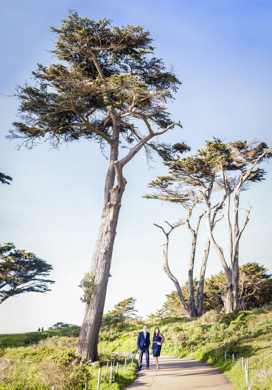 abigail-stephen-engagement-session-lands-end-san-francisco-tall-tree-1.jpg