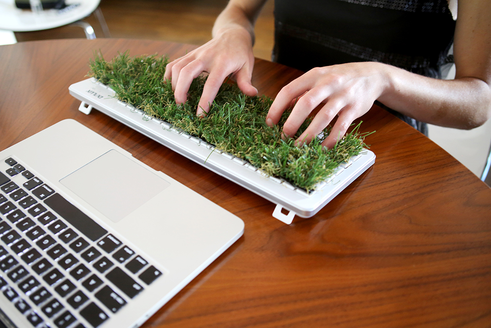 """Grass keyboard:  Using a grass keyboard as a tool to interrupt the typing process, I attempted to type """"Handle the driver units carefully"""" to see what sort of results I would get"""