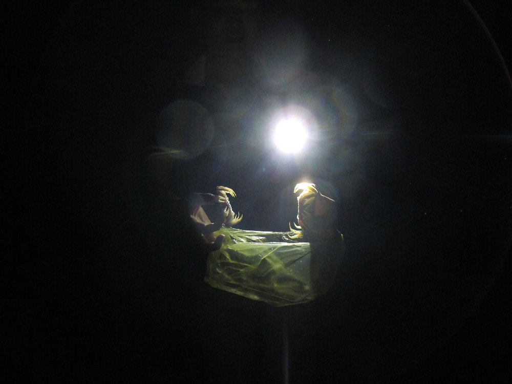 Catching crabs with a plastic bag on the beach during the night #vietnam / sergivich.com