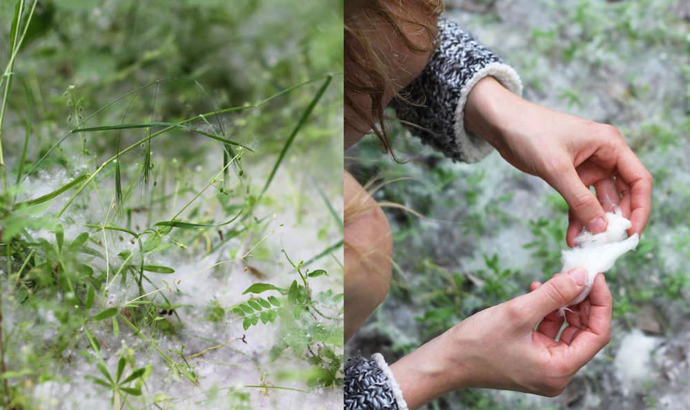 Spring materials / Materials de primavera #SpringMaterials #MaterialsDePrimavera / sergivich.com