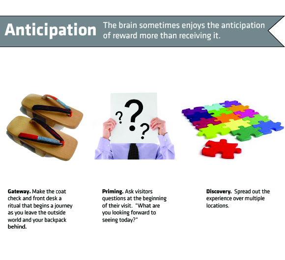 Anticipation: The brain sometimes enjoys the anticipation of a reward more than receiving it