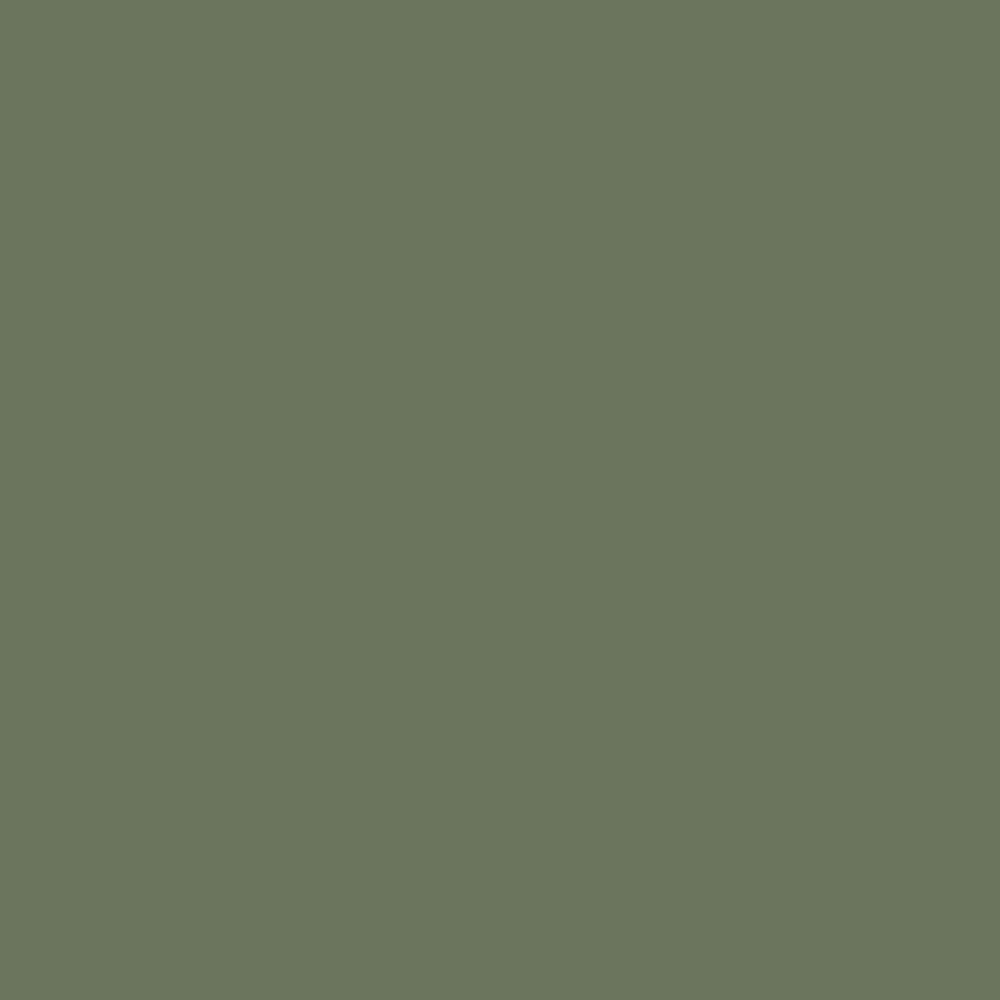OLIVE Linoleum