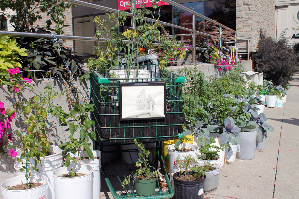 Shopping Cart Planter
