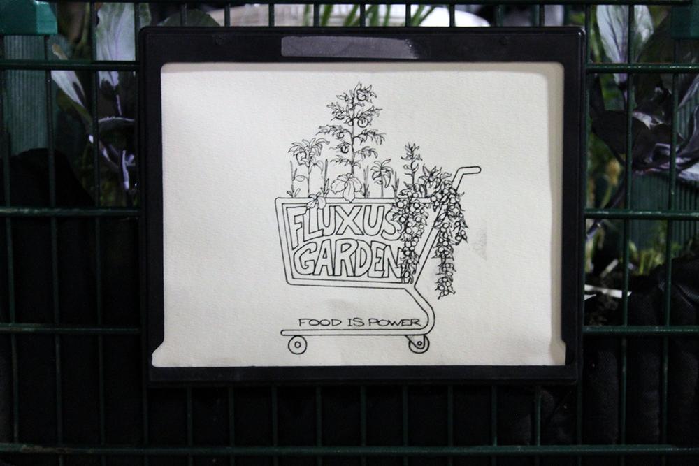 Fluxus Garden 13(2).jpg