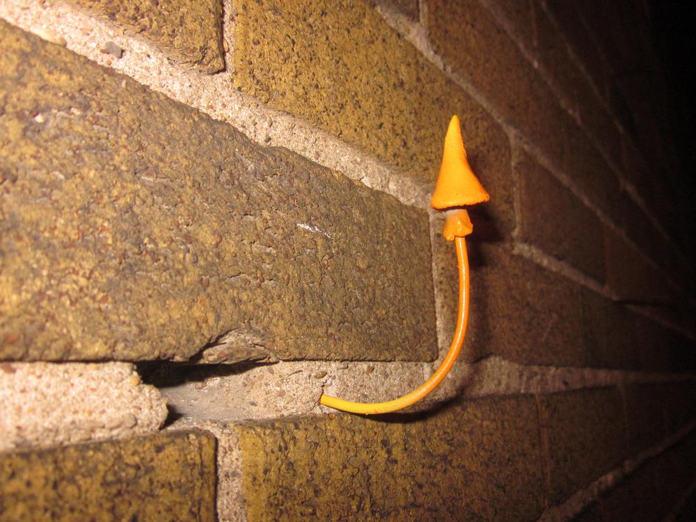 Urban Mushroom Installation 2(2).jpg