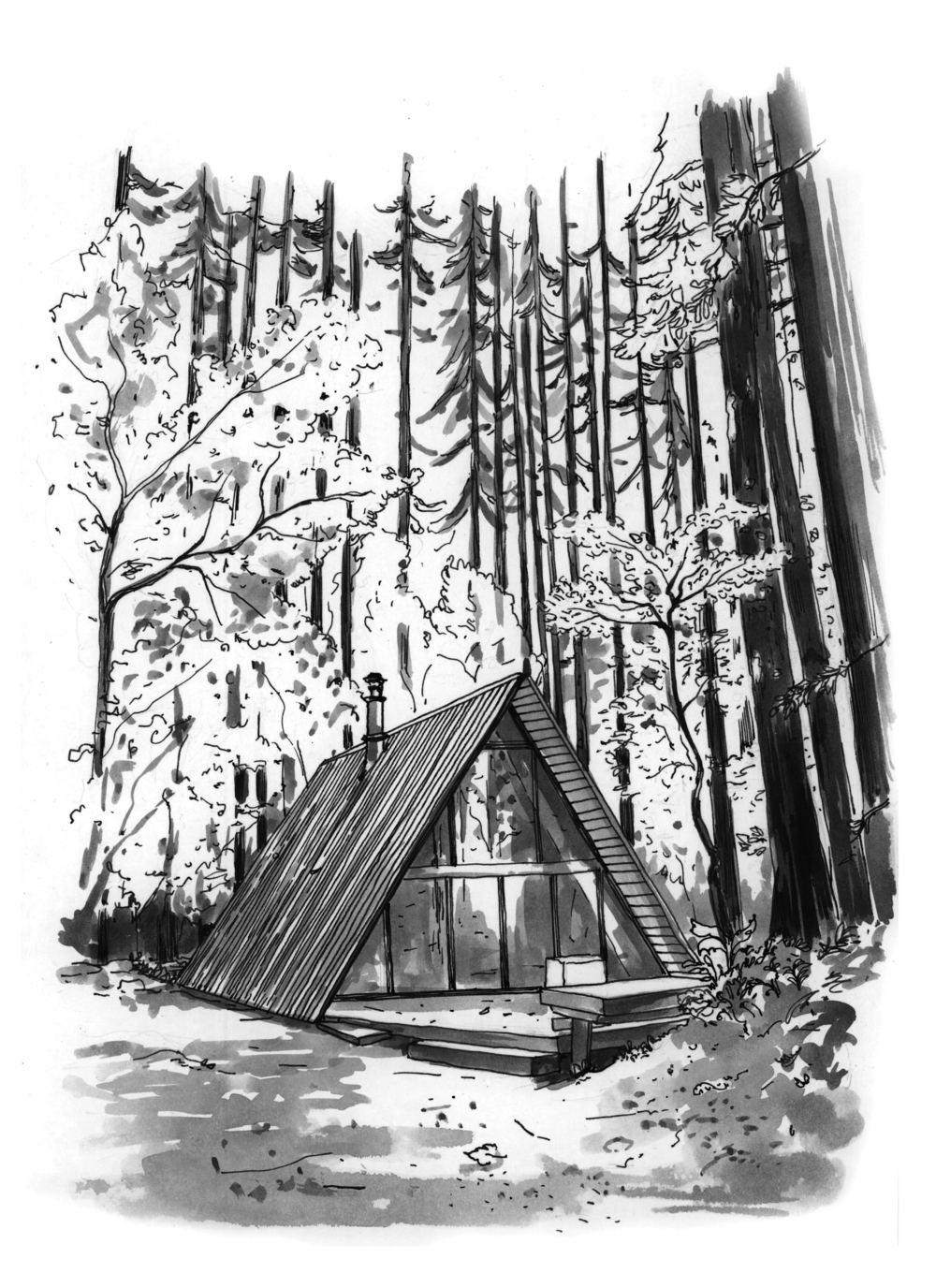 tye river cabin co