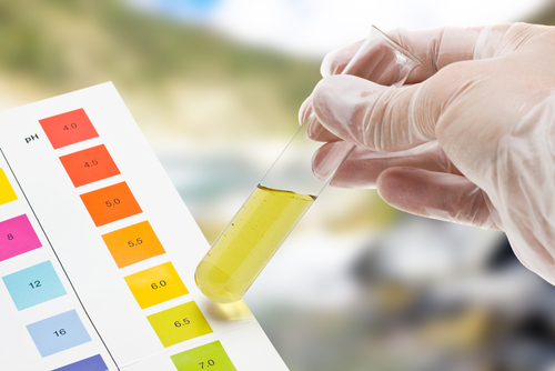 "There is no best pH to be! Depending upon your health and health goals the pH of different ""body compartments"" must be carefully considered."" - Dr. Michael Wald, The Blood Detective"