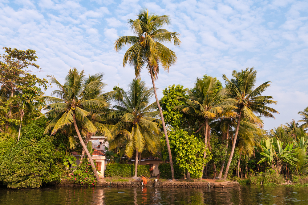 Kerela Backwaters, India