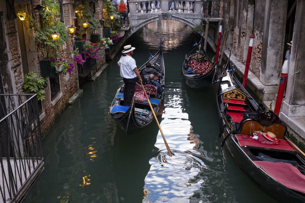 Italy - Traffic in Venice