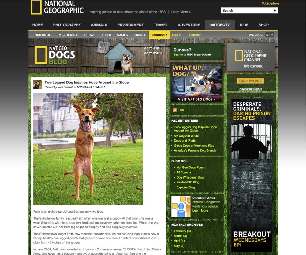 Nat Geo Dogs