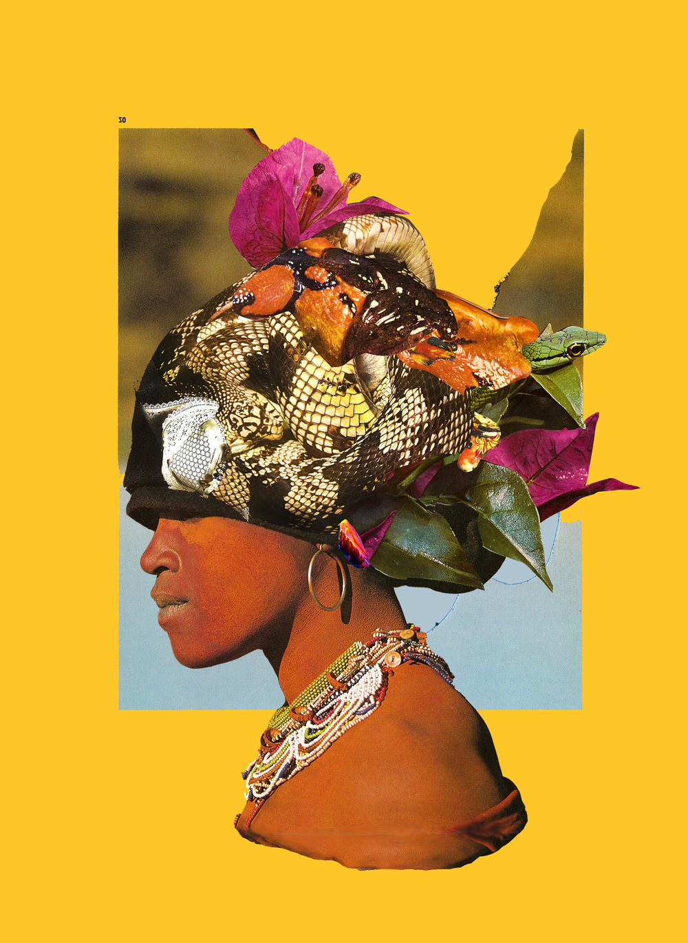 africa matriarch1.jpg