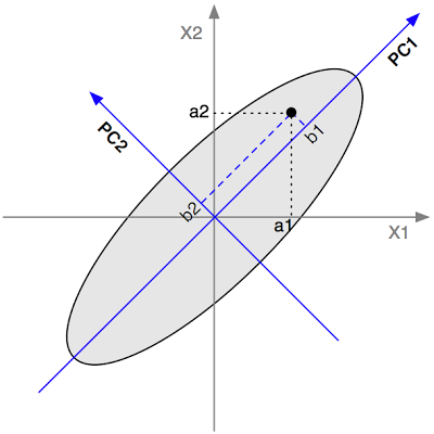 Figure 3: Coordinates for a point on the original axes and on the PC axes.