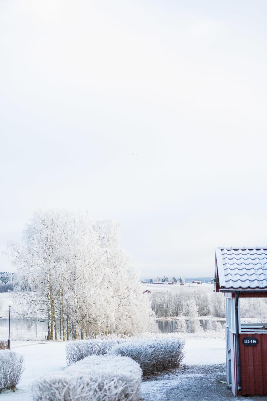 UlvsbyHerrgard_vinter-IMG_9732.jpg