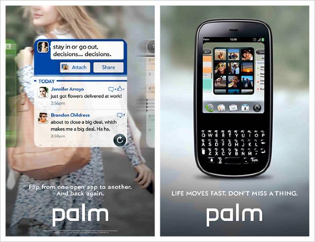 palm_tova_640.jpg