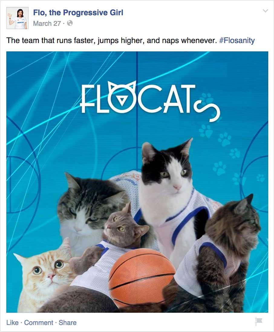 flocat4.jpg