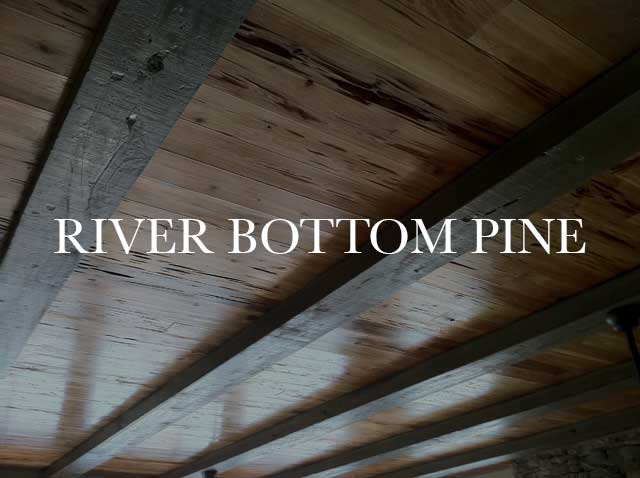 River Bottom Pine