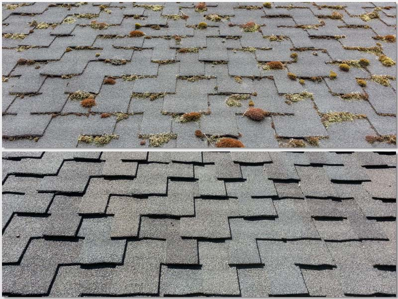 No-Pressure-asphalt-roof-cleaning.jpg