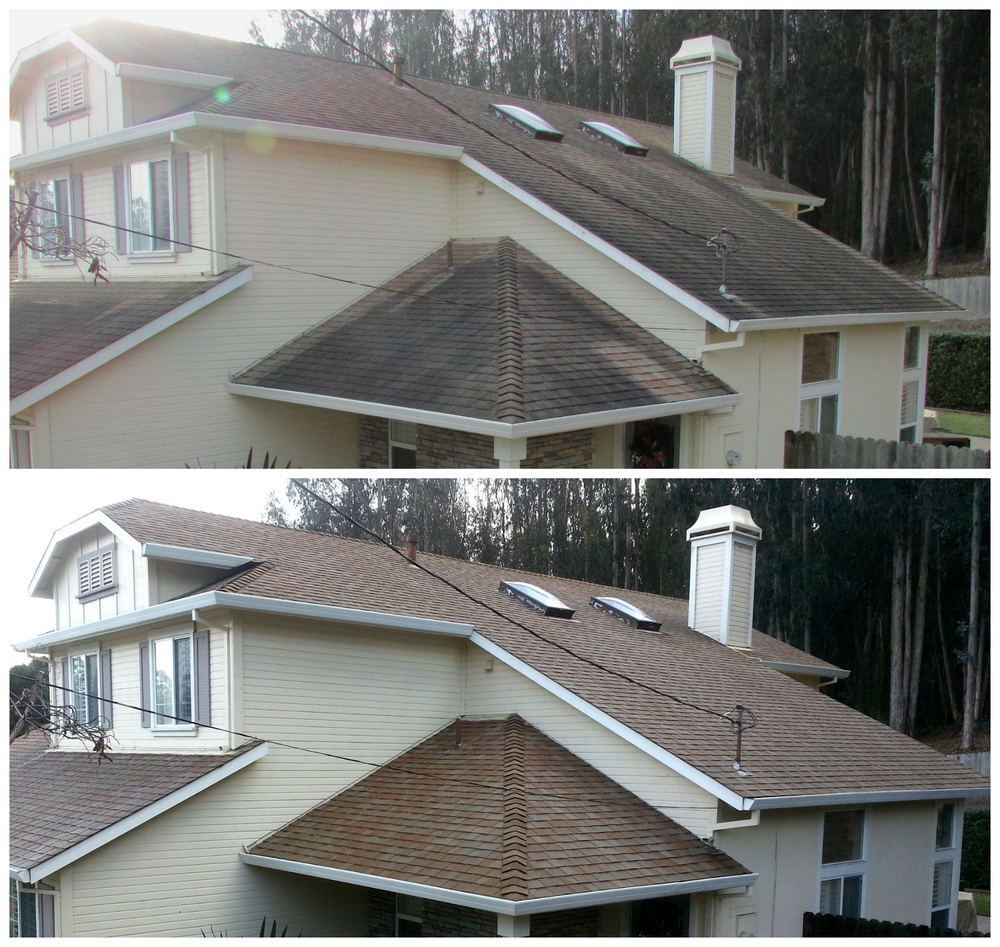 Asphalt Shingle Cleaning.jpg