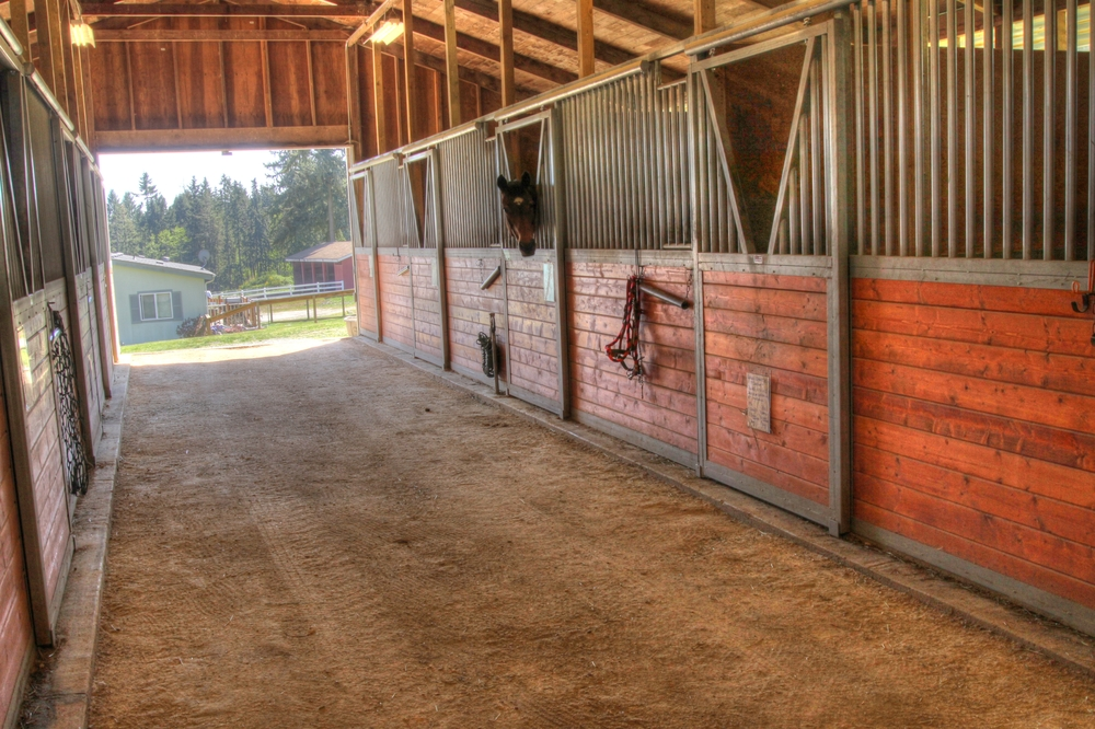 80 AC Ranch GigHarbor 1 139_40_41.jpg