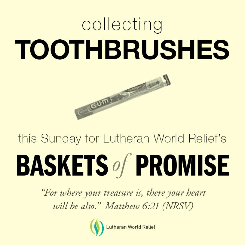 3 Toothbrushes.jpg