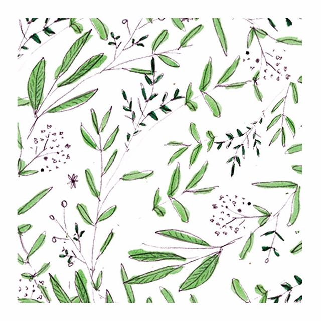 Botanical stationery patterns 🌿 . . . #mimolostationery #weddingstationery #persuepretty #dailydoseofpaper #stylemepretty #seekinspirecreate #dsfloral #illustratorsofinstagram #sketchbook #printisntdead #papercraft #botanicalcreativity_ #thatsdarling #weddingseason #weddingwednesday #patternaday #patternlover #patternlove