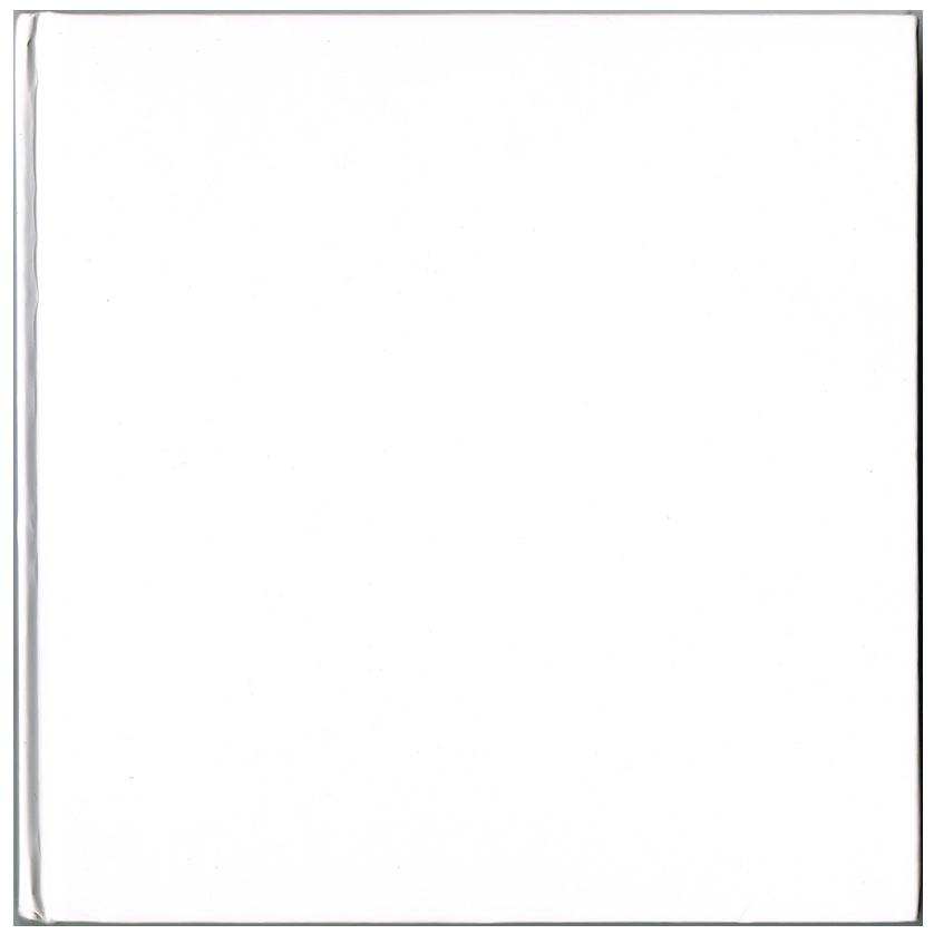 White-Big22112011_00037.png