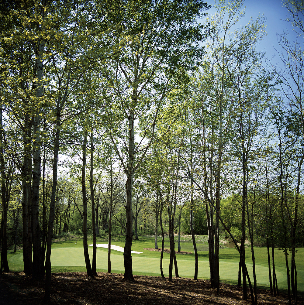 Hole 4 viewed from a higher angle