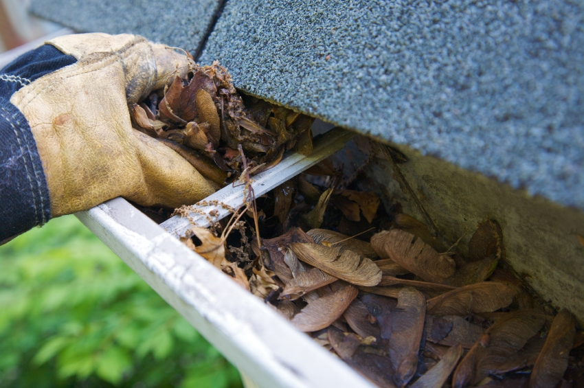 Having the gutters checked before buying is a must. You can spend thousands on poorly designed gutters.