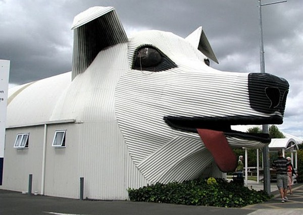 Sheep Dog House,New Zeland.jpg