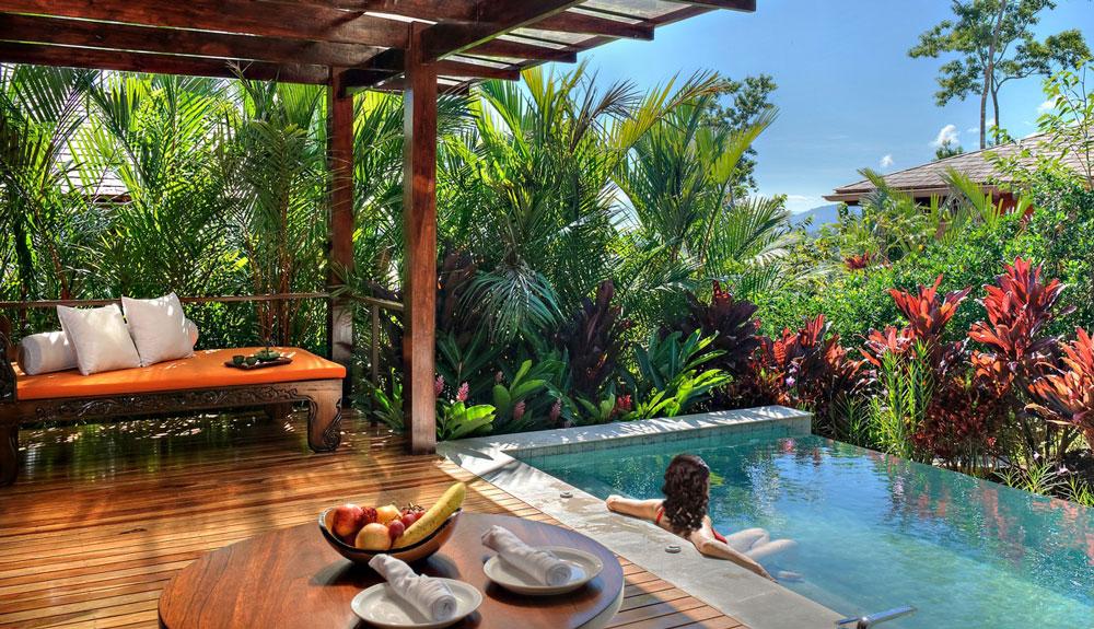 Image: Papaya Antigua