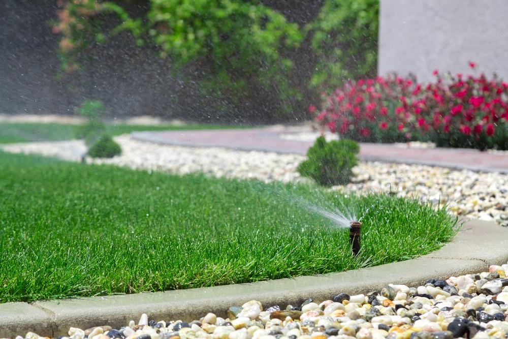 garden sprinkler.jpg