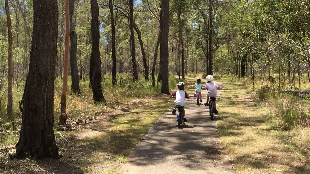 Boondall Wetlands trail