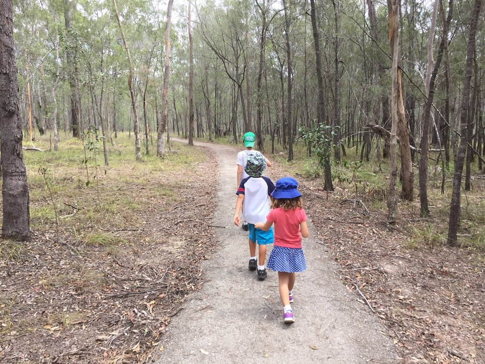 Toohey Forest Park