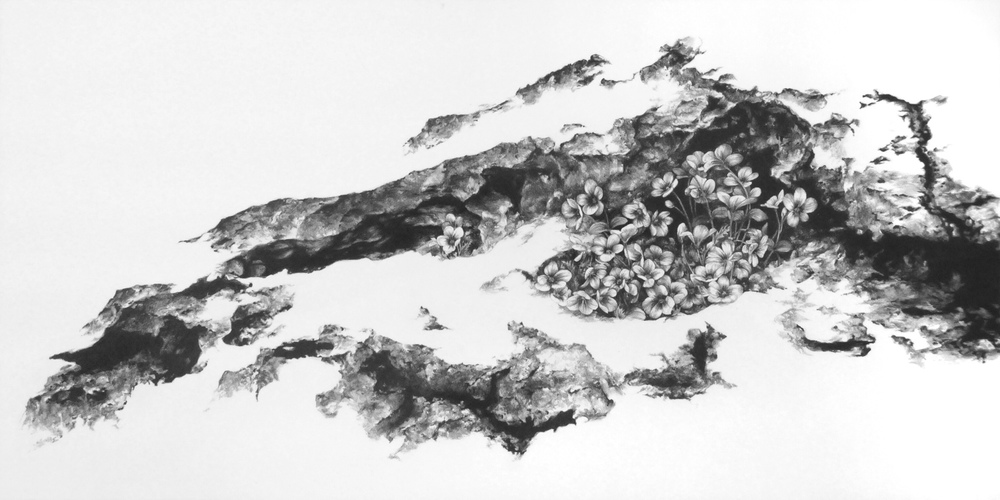 "The Fertile Rock I  Graphite on clayboard  12"" x 24"""