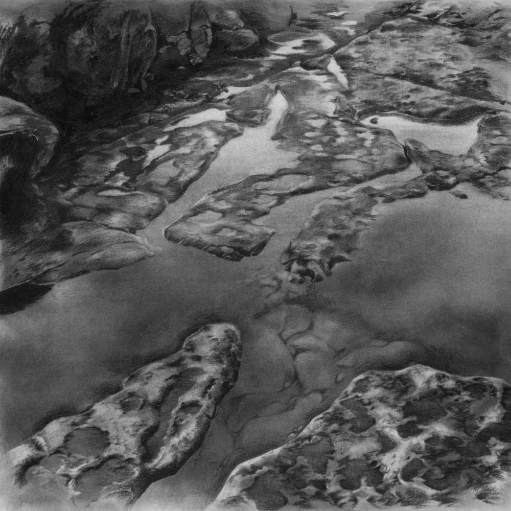 Intertidal.jpg