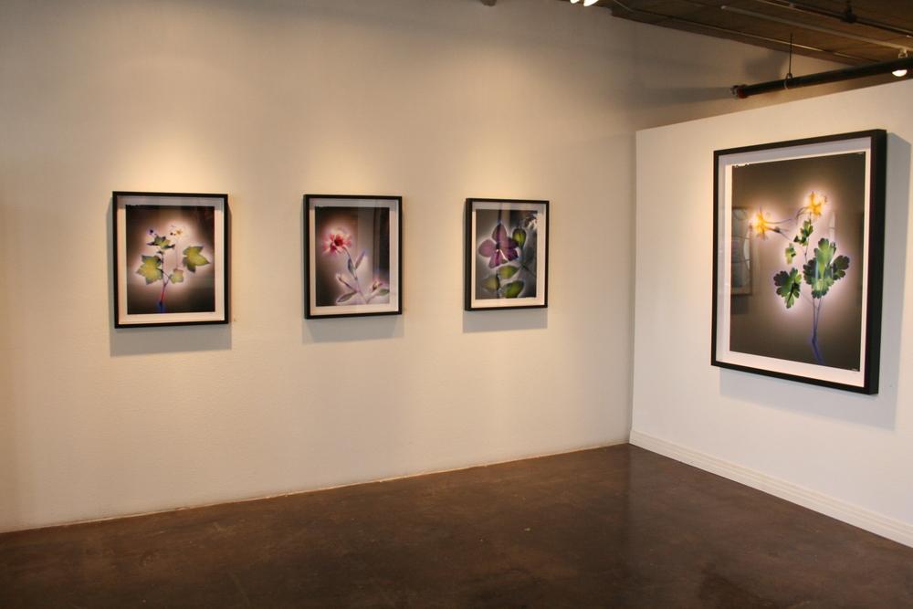 Gallery shots 3-6 014.jpg