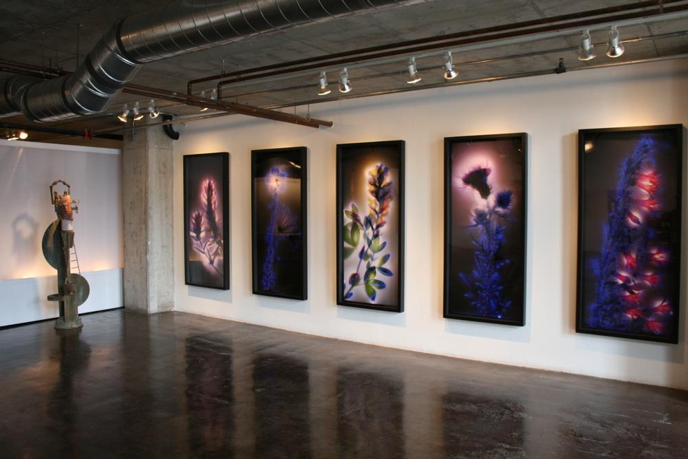 Gallery shots 3-6 016.jpg