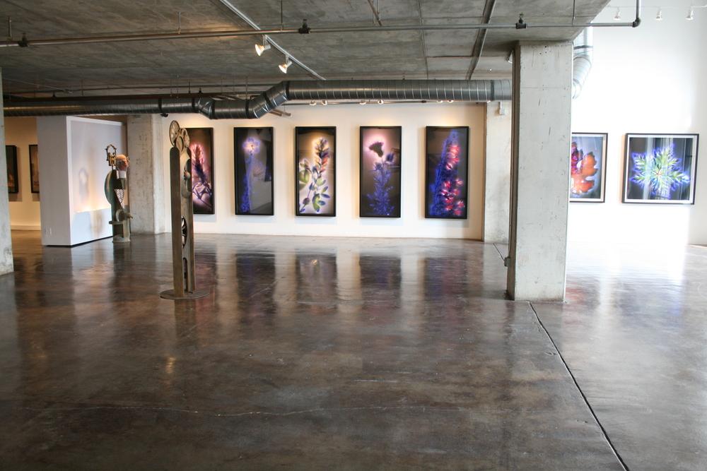 Gallery shots 3-6 011.jpg