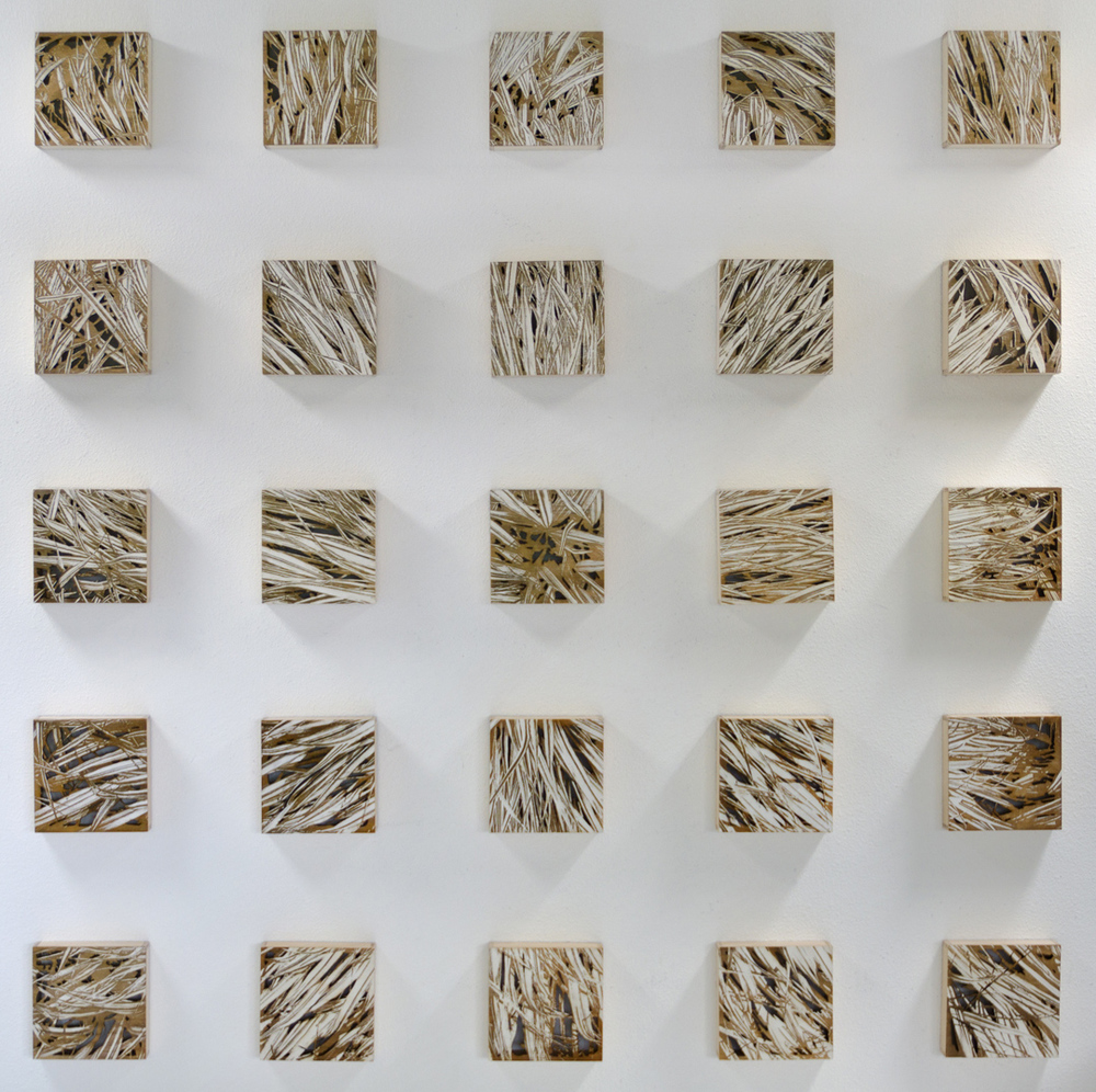 "Karin Schminke  ""Exponential Growth""  54x54  Baltic Birch"