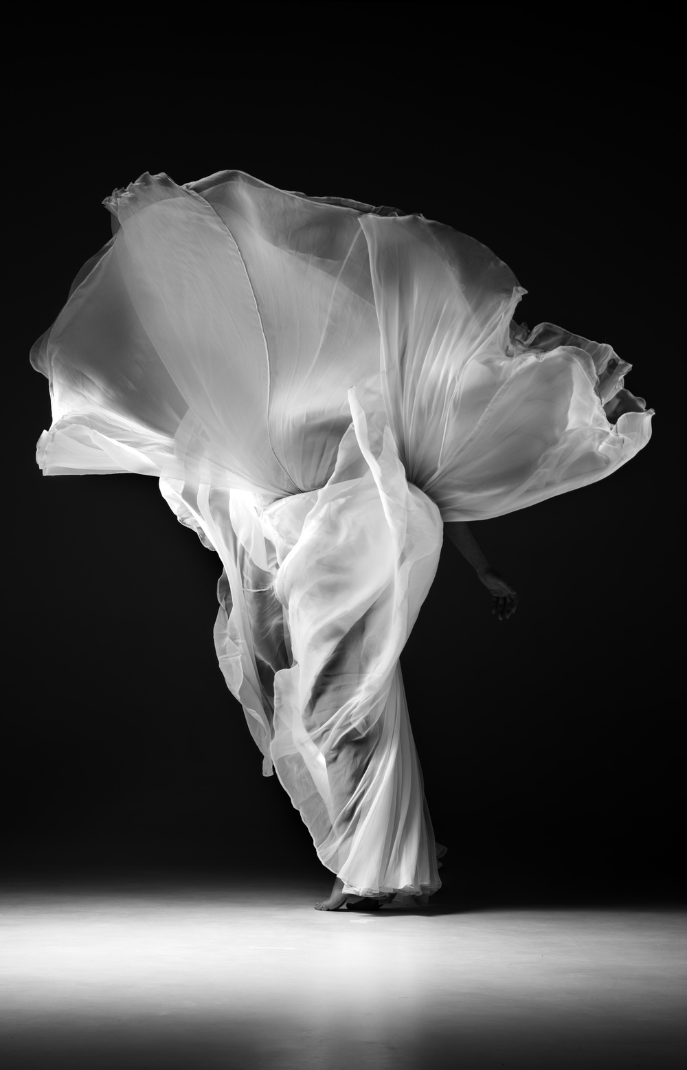 "Michael McConnell  ""Zosia""  48x63  digital photography"