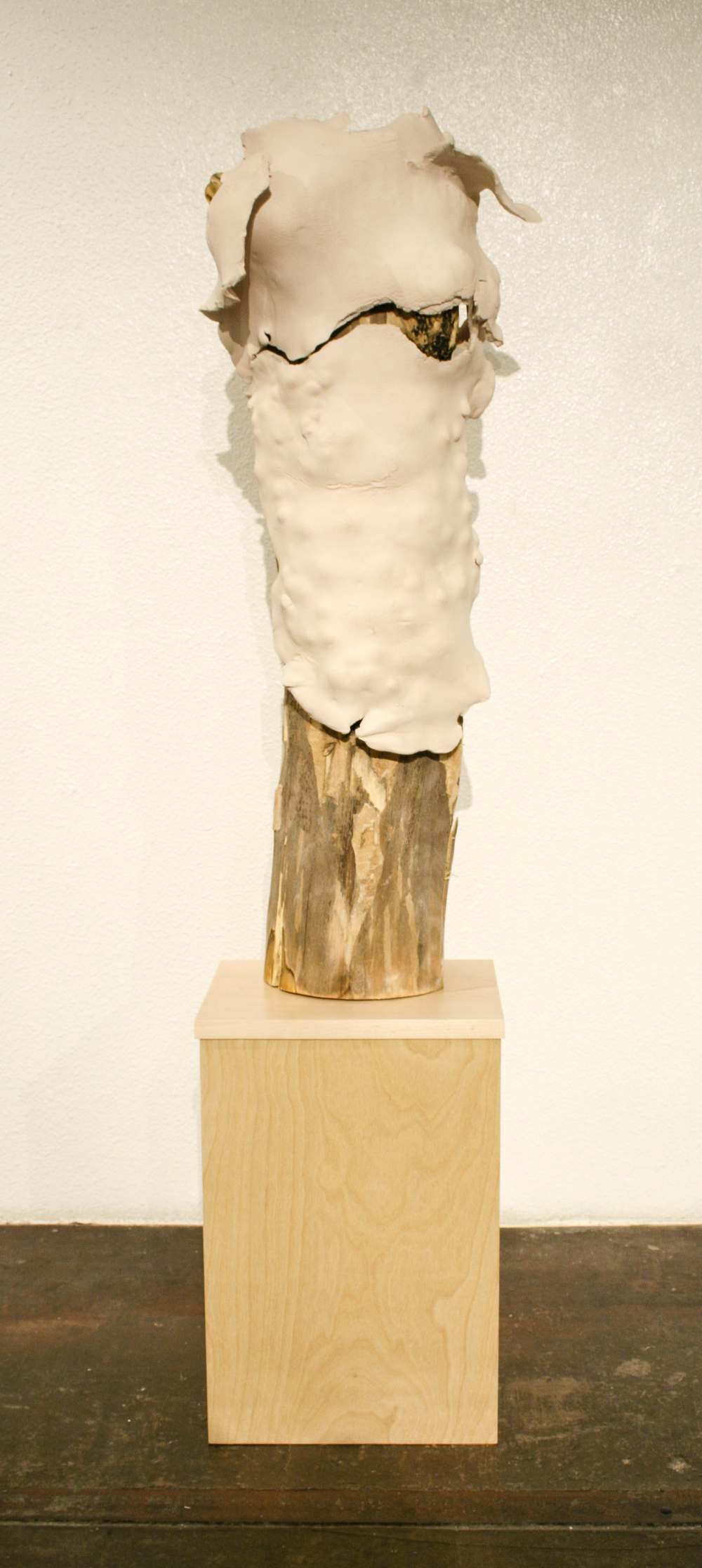"Kim Ferrer  ""Cellular Memory""  64x12  Clay, wood"